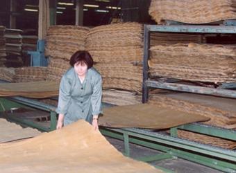 Фанера: производство фанеры